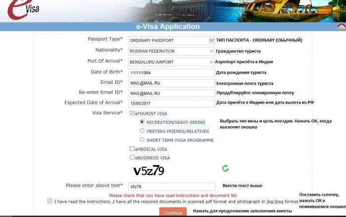 E-Visa Application