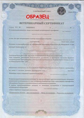 Сертификат по форме № 1