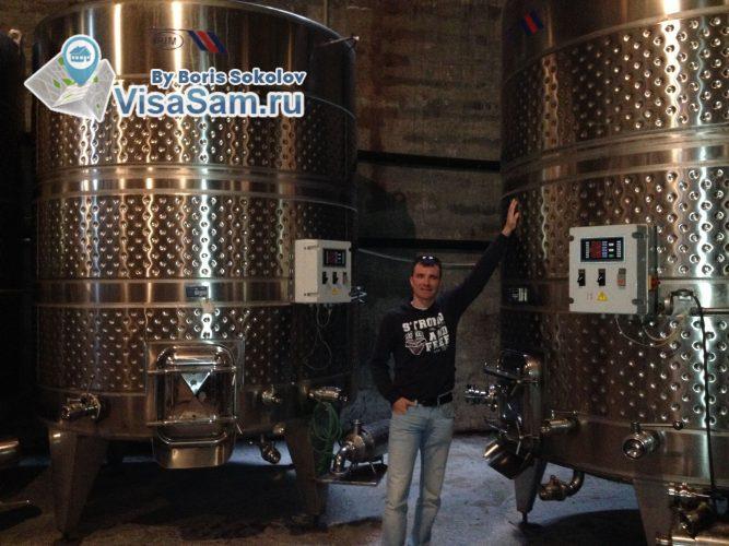 винный завод в Грузии