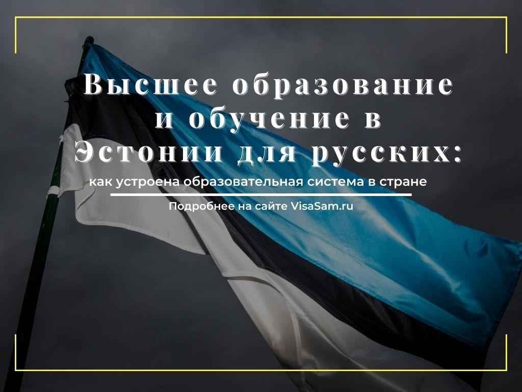 Образование и обучение в Эстонии